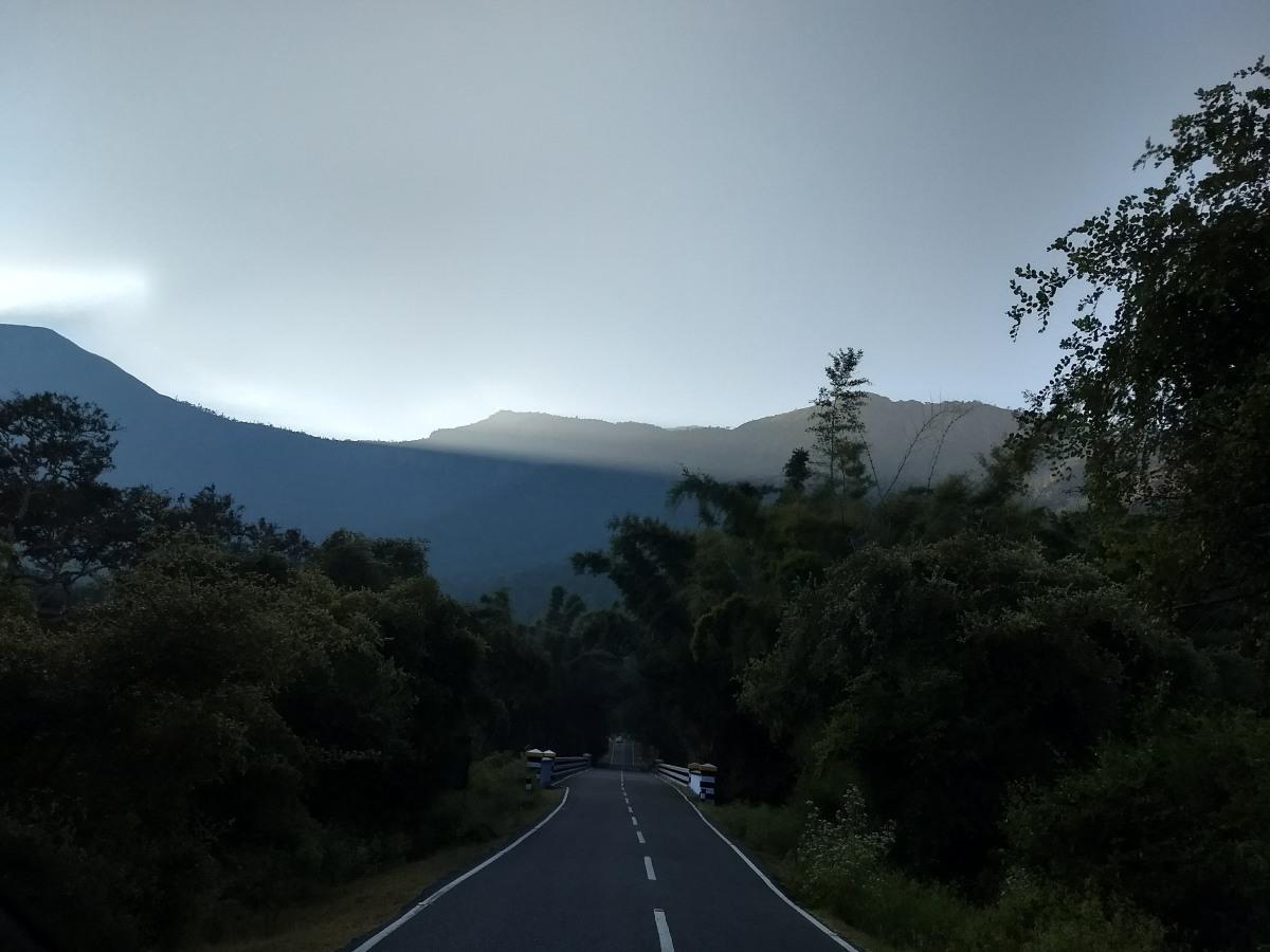 30 km of wildlife: Driving through Bandipur-Mudumalai forest